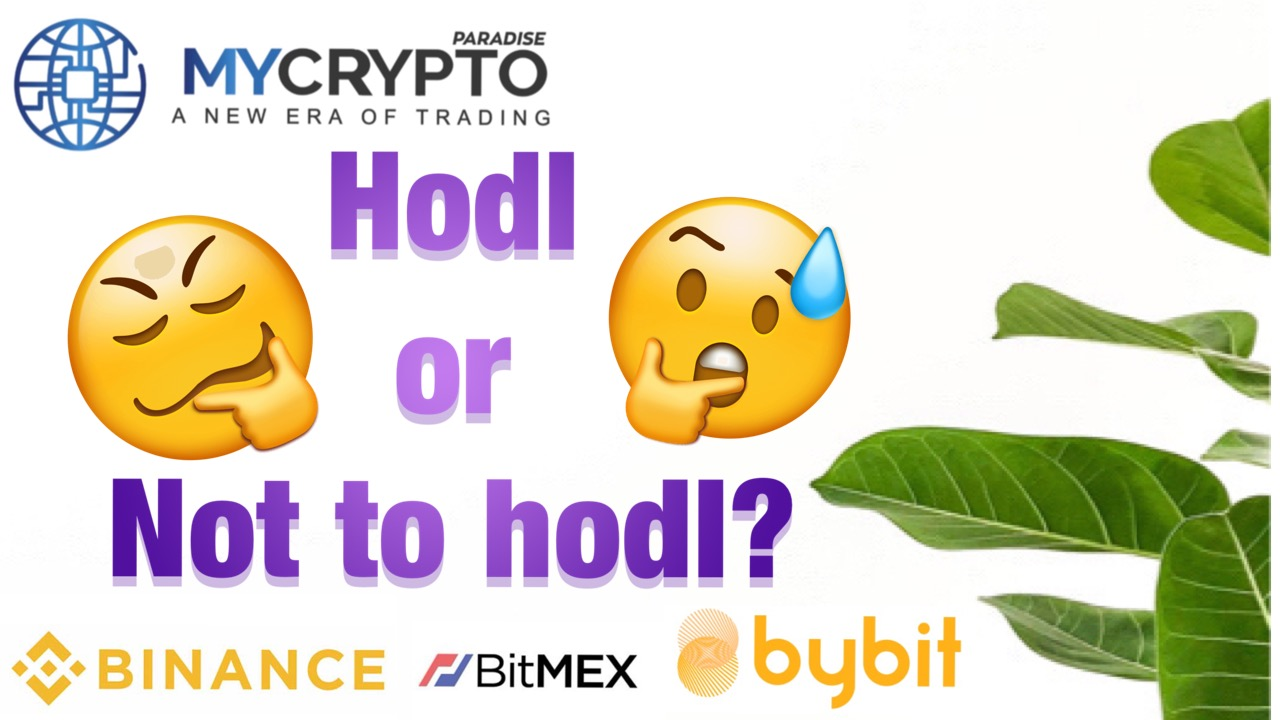 What are the advantages of Hodling Bitcoin and other crypto altcoins?