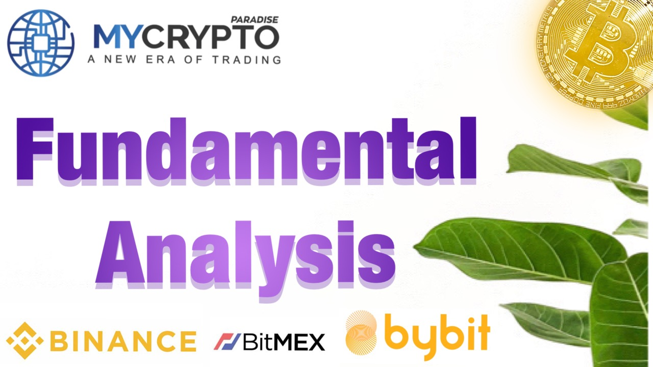 What are the Key Elements in Performing Fundamental Analysis of Cryptocurrency