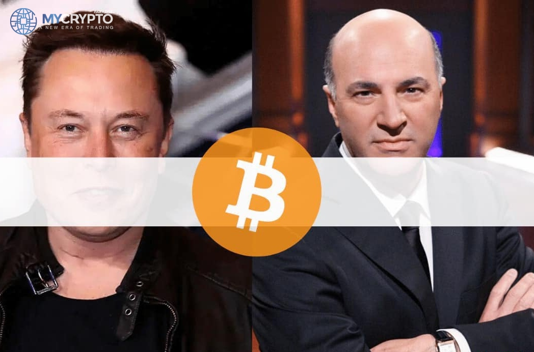 Tesla's Shareholders pressured Elon Musk to Drop Bitcoin Payments, Kevin O'Leary Speculates