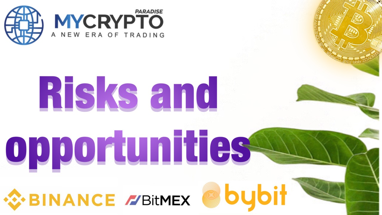 What are the Risks and Opportunities in Investing in Altcoins